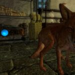 El mito del 'zorro del tesoro' de Skyrim ha sido explicado