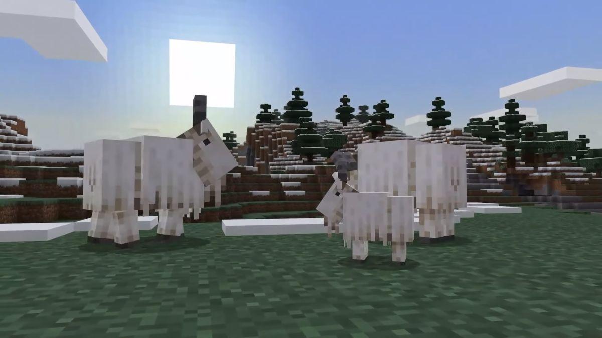 Las turbas de cabras que gritan de Minecraft son expresadas por cabras legítimas que gritan