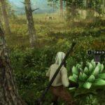 Ubicaciones de New World Petalcap: dónde encontrar este recurso